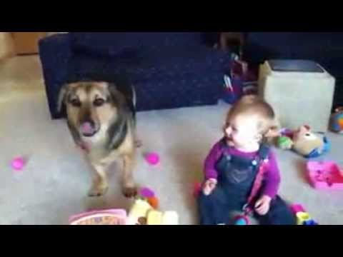 Watch This Video and Laugh for 2 Minutes - Best Funny Video