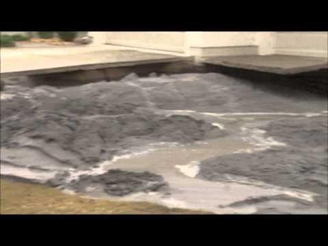 Raw- Sinkhole Swallows Part of Fla. Yard News Video