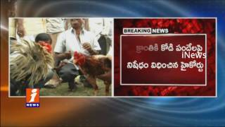 High Court | Not To Conduct Rooster Fight on Sankranthi | iNews