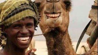 Video Lucu Orang - Orang Arab Yang Bikin Ketawa video - id 3219949a7531 -  Veblr Mobile