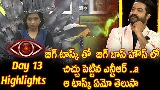 Jr NTR bigg boss show day 13 highlights - Star maa - Episode 14-Ntr Big Villan Task To House mates -