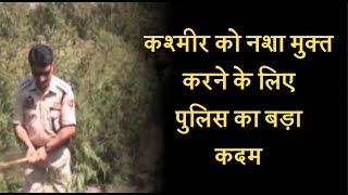 कश्मीर को नशा मुक्त करने के लिए पुलिस का बड़ा कदम