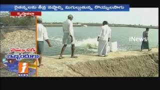 Farmers Greediness Causes For Huge Losses in Prawns Farming in Krishna District | iNews