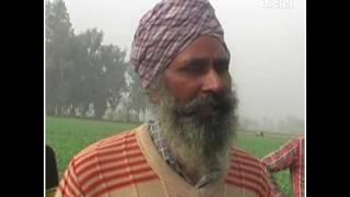 सुखबीर बादल की पानी वाली बस ने डुबाे दिए कई किसान !
