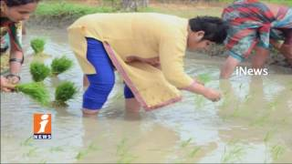 Medak Collector Bharathi Hollikeri Plants Rice Paddy at Field With Workers | iNews