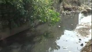 पडित ग्रामीणों चारपाई बिछाकर तहसील में डाला डेरा