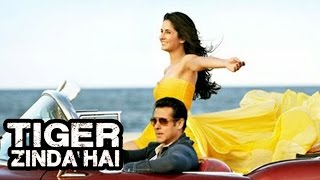 download hd video song movie tiger zinda hai