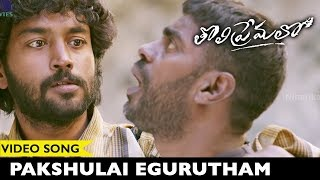 Tholi Premalo Movie Songs Pakshulai Egurutham Video Song Chandran, Anandhi Prabhu Solomon