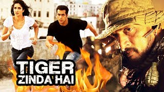 South's Villain To FIGHT With Salman In Tiger Zinda Hai, Fire Breaks Out On Tiger Zinda Hai Sets