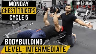 CHEST & TRICEP Split Workout! Cycle 5 (Hindi / Punjabi)