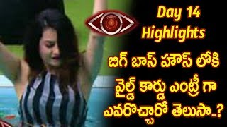 Big Boss Telugu Wild Card Entry  - bigg boss telugu reality show  day 14 highlights - Star Maa
