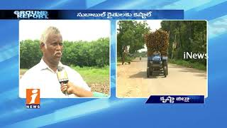 Farmers Concern On Subabul Tree Cultivation Over Support Price In Krishna | Ground Report | iNews