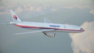 MH17 Crash - English Spoken