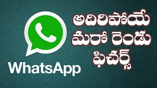 Two New Features in Whatsapp || WhatsApp New Features