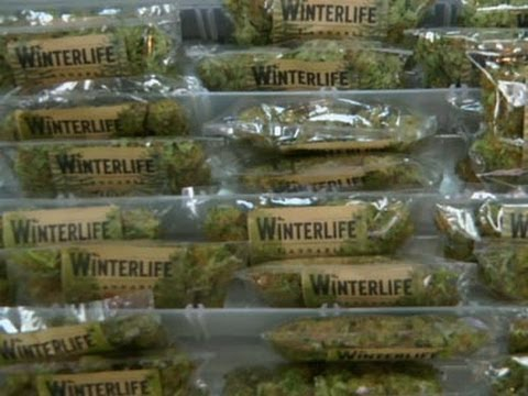 Seattle Company Delivers Highs to Customers News Video