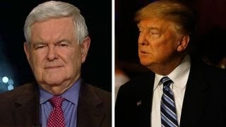 Newt Gingrich on Donald Trump's H1B visa policy