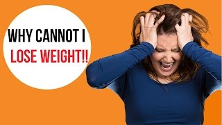 Leptin- How to Reset Your Fat Loss Hormones