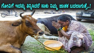 ಗೋವಿಗೆ ಇದನ್ನು ತಿನ್ನಿಸಿದರೆ ನಿಮ್ಮ ಜಾತಕ ಬದಲಾಗುತ್ತೆ | Kannada Unknown Facts about Godhana | TopKannadaTV
