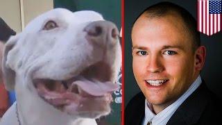 Man saves dog: Army veteran Lee Coffman saves pit bull from vicious beatdown in Las Vegas