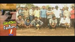 Cock Fights Starts Early In Anantpur District Than Godavari Districts | iNews