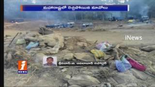 Maoists Torch 47 Trucks, 4 JCBs and 2 tractors In Maharashtra | iNews
