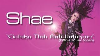 SHAE - Cintaku Tlah Mati Untukmu (Official Music Video)