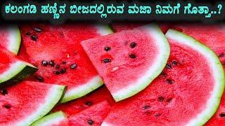 Secrete benefits Water Million Seeds   Useful Video Must Watch   Kannada Health Videos
