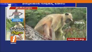 Women's Fears On Baboons Over Attacks In Annaram | Suryapet | iNews