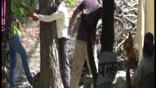 दारोगा जी थर्ड डिग्री, युवक को पेड़ से बांधकर पीटा