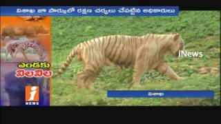 Indira Gandhi Zoo Park Animals Suffering Due To High Temperature In Visakha | iNews