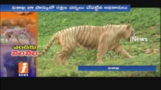 Indira Gandhi Zoo Park Animals Suffering Due To High Temperature In Visakha | iNews