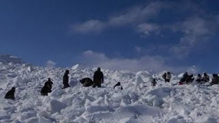 One Army Jawan found alive after six days in Siachen