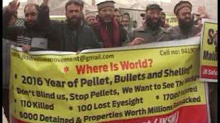 फिर बिफरे अलगाववादी, जेके सैलवेशन ने निकाली विरोध रैली