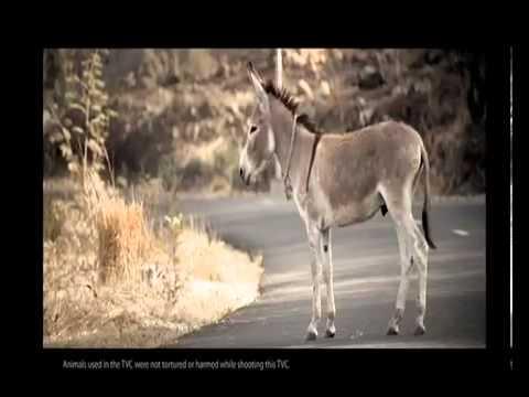 CEAT SUV Tyres - Kahan Rukna Hai Pata Hai - 2 New TV Advt Video