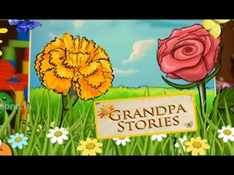 Grandpa Stories - Beautiful Rose - English Moral Story For Kids