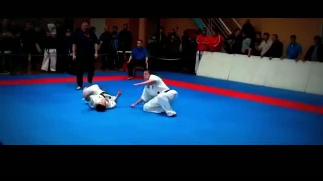Incredible Karate Kick HD