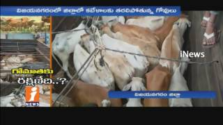 Cows Protection Reduced In Vizianagaram | Govt Neglects | iNews