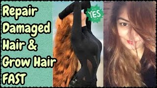 DIY Hair Tonic | Pack for Heavy Hair Growth, Treat Dandruff/Stop Hair Fall | Get Silky Healthy Hair