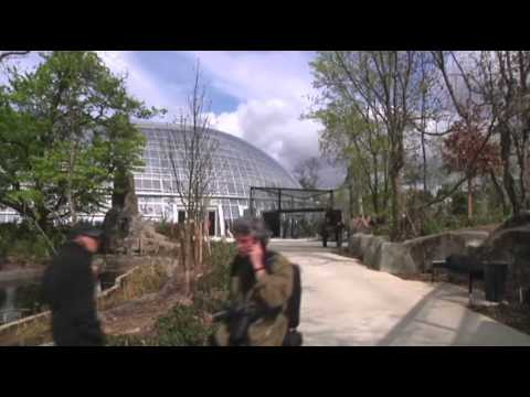 Raw- Paris Zoo Set to Reopen After Makeover News Video