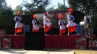 Bhangra group with Dj Sterling Jalandhar9815489777