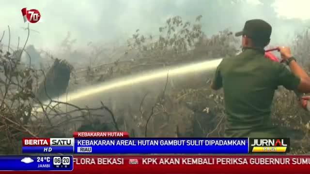 Kebakaran Sudah Melalap 5000 Hektare Lahan di Riau