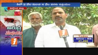 Arudra Worms Business For Making Of Medicine In Nalgonda | iNews Exclusive | iNews