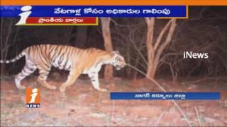Animal Hunters Eyes On Nallamala Forest Animals | Forest Officers Negligence | iNews