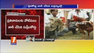 Supreme Court Stay on High Court Verdict On Cock Fights Ahead of Sankranthi | iNews