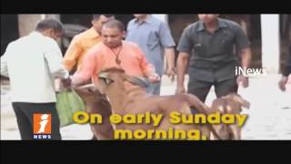 UP CM Yogi Adityanath Visits Gorakhpur | cow shelter | iNews