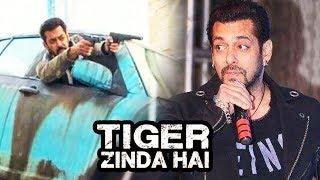 Salman Khan's Reaction On Tiger Zinda Hai STUNT & ACTION Scene