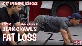 How to- MOST EFFECTIVE exercise for GUARANTEED FAT LOSS ! Bear Crawls ! (Hindi / punjabi)