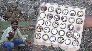 Village type Angry Bird 100 Eggs Boiled | Natural type boiled you will never seen before | Egg
