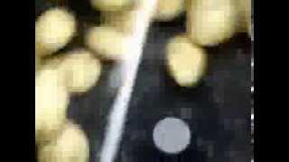 potato washing and peeling machine SEJAL ENTERPRISES PUNE