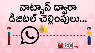 WhatsApp Plans Indian Digital Payments | New Whatsapp Online Payments Feature | Rectv India